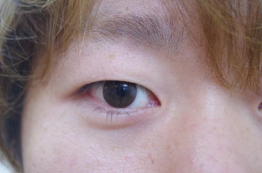 ホッシーさんの目2