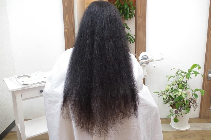ブログを見てヘアドネーションのお客様がご来店して下さいました。