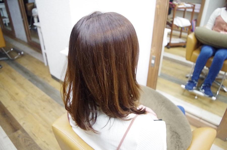 カラー後一カ月の髪。